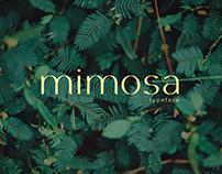 mimosa - typeface