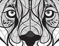 Black & White Jaguar