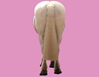 PETA HORSES