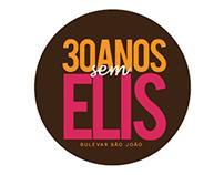 30 Anos sem Elis