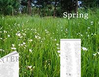 Spring - wallpaper