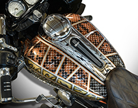 Snakeskin Finish Road Glide Special 2015