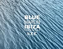 BLUE MARLIN IBIZA UAE       THE GUIDELINES
