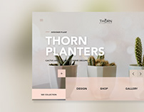 Thorn Planters