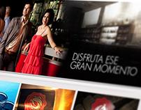 Propuesta WEB site Tequila Tesoro de reyes