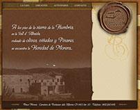 Sitio Web Flash Jullian Turismo Rural Morera