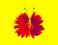 Flowerfly