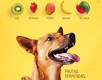 Conteúdos Pet Shop Prime