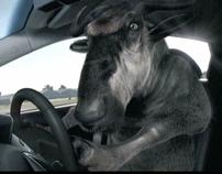 Hyundai iX35 - TopDeer Parody Campaign