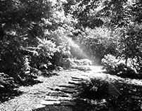 Missouri Botanical Gardens