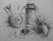 Sunflowers and lighthouse