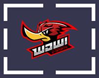 WDWI e-sports