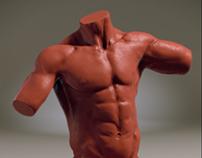 Body Sculpts