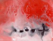 Escanografías 2010