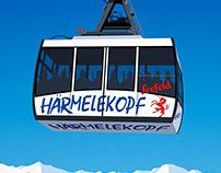 Seefeld Ski Poster