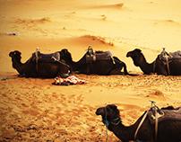 Marrakech Africa