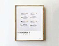 #Arrangements photography