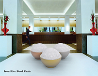 Iron Rice Bowl