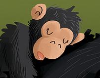 Ellie the Chimpanzee