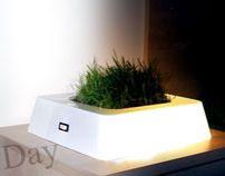 Light Project: