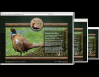 Websites while employed at KeyDesign