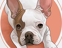 Mascotas / Pets