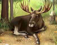 "Ebook: ""Animals around the World"""