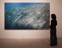 Life-Size Photographs of Whales