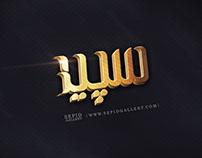 sepid gallery logo
