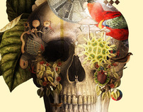 Skull Laprisamata