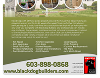 Blackdog - Full One-Page Home Services Brochure Design