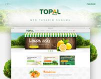 Topal Narenciye | Web Design
