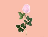 Photomontage - Octobre rose.