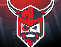 Viking Logo Illustration