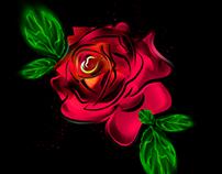 RED ROSE - ILUSTRATION / @SONGARTWORK