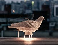 Dove Light
