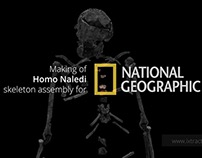 ixtract | Homo naledi animation for NGM