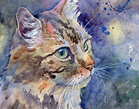 Watercolor cats