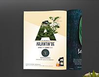 Dr. Tea Co. Branding Design