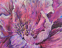 Flower. Bright feelings (paper, soft pastel, 50x70 cm)