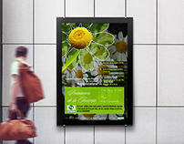 Primavera de la inserció - Poster