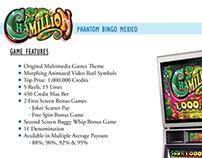 Chamillion Marketing Sell-Sheet (Front & Back Views)
