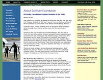 Surfrider Foundation, Pro Bono Web Design/Development