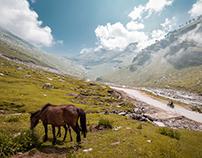 Delhi Ladakh Roadtrip