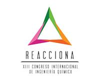 XIII Congreso Internacional de Ingeniería Química.
