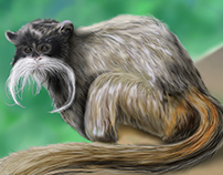 Tamarin Monkey - Digital Painting