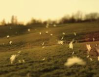 «Demain peut-être» / Émilie Proulx