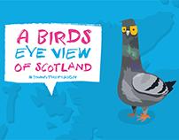 A Bird's Eye View of Scotland