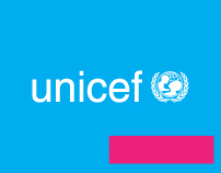 Unicef / ICDB 2010 hotsite
