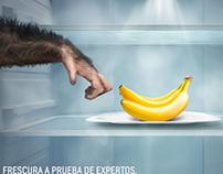 """Samsung """"Frescura a prueba de expertos"""""""